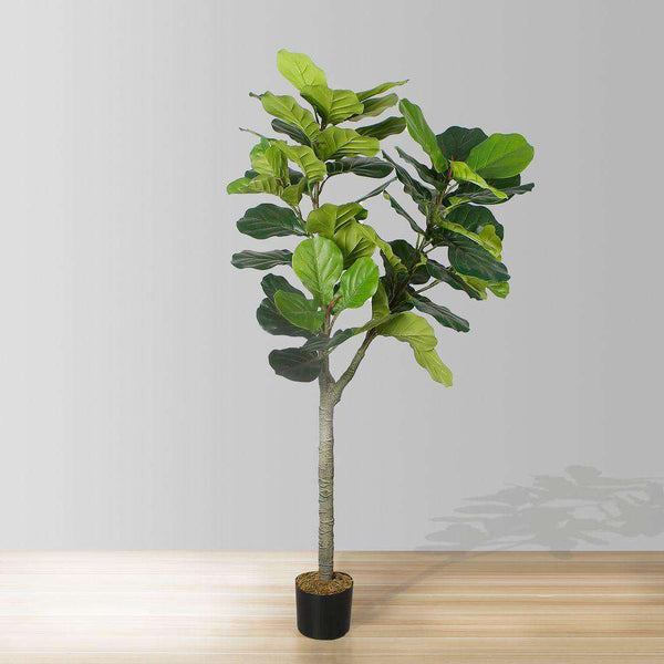 CORA Artificial Fiddle Leaf Potted Plant 5.5' ArtiPlanto