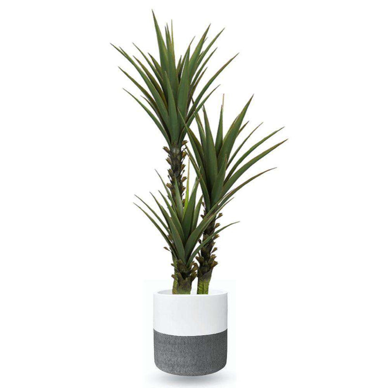 Coba Cement Planter (Multiple Sizes) ArtiPlanto