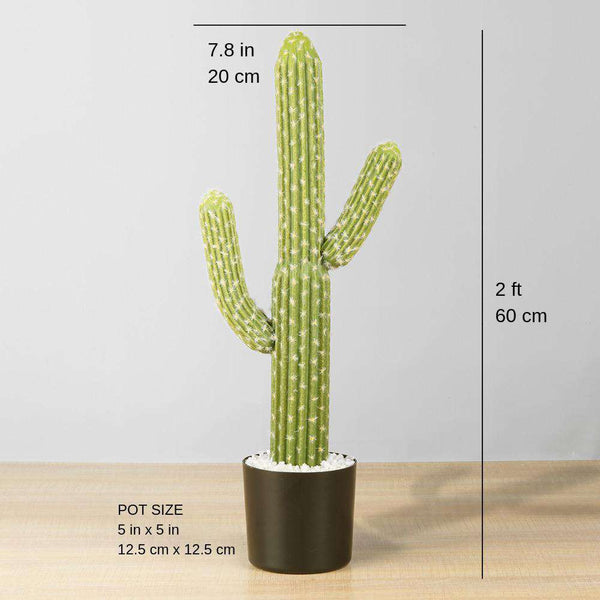 DADO Artificial Cactus Potted Plant 2' ArtiPlanto