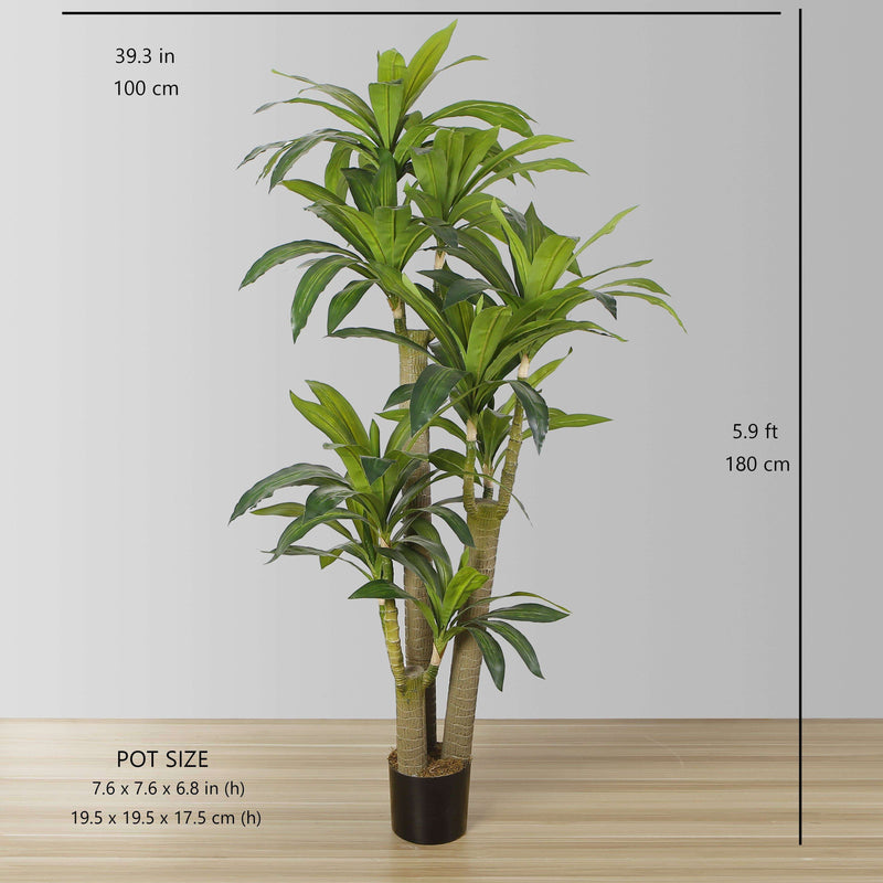 DANA Artificial Draecena Tree Potted Plant (Multiple Sizes) ArtiPlanto