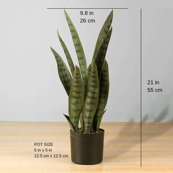 DEZI Artificial Snake Sansevieria Dark Green Potted Plant 21'' ArtiPlanto