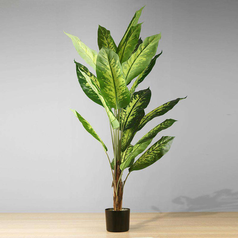 DIRA Artificial Evergreen Potted Plant (MULTIPLE SIZES) ArtiPlanto