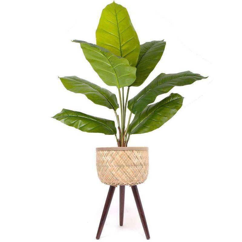 FLAR BAMBOO PLANTER ON WOODEN STAND ArtiPlanto