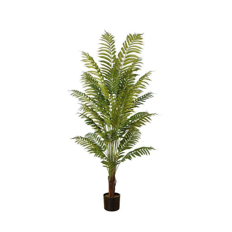 GALI ARTIFICIAL FERN POTTED PLANT 5' ArtiPlanto