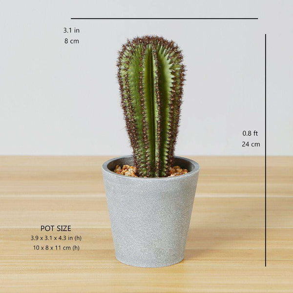 GOZA ARTIFICIAL CACTUS TREE POTTED PLANT 9'' ArtiPlanto