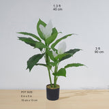 BELEN ARTIFICIAL ANTHURIUM LEAF POTTED PLANT (MULTIPLE SIZES)