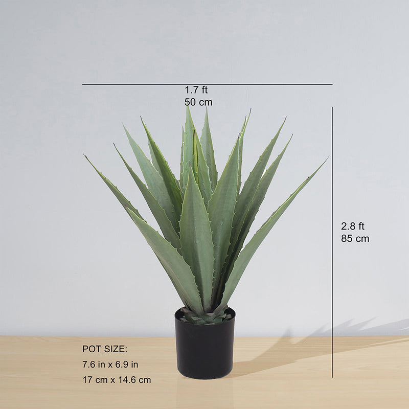 TUNJA ARTIFICIAL AGAVE POTTED PLANT (MULTIPLE SIZES)