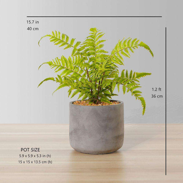 KUTA POTTED FAUX FERN ArtiPlanto