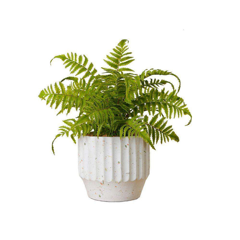 KUWU POTTED FAUX FERN ArtiPlanto