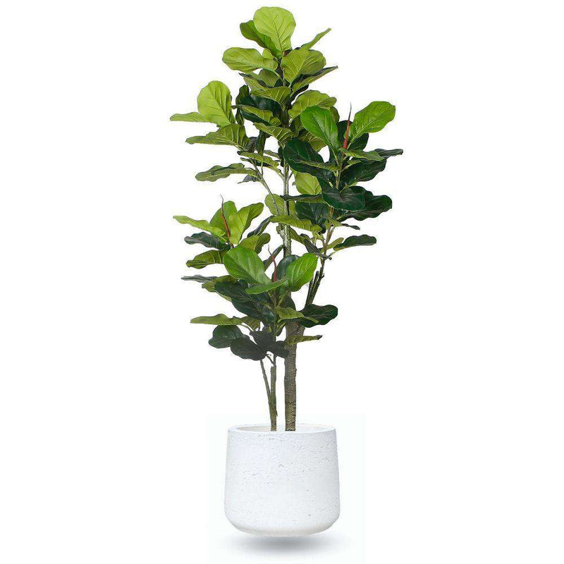LAZARO WHITE CEMENT PLANTER 13'' ArtiPlanto