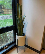 MILO Artificial Snake Sansevieria Dark Green Potted Plant (MULTIPLE SIZES) ArtiPlanto