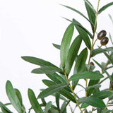 Madero Potted Faux Olive Plant ArtiPlanto