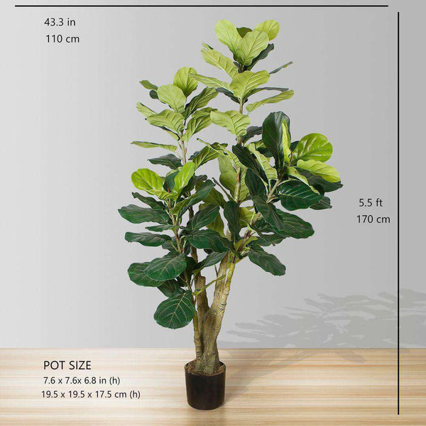 PICO Artificial Fiddle Leaf Potted Plant 5.5' ArtiPlanto