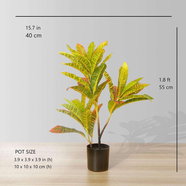 "PINTO Artificial Crotons Potted Plant 22"" ArtiPlanto"