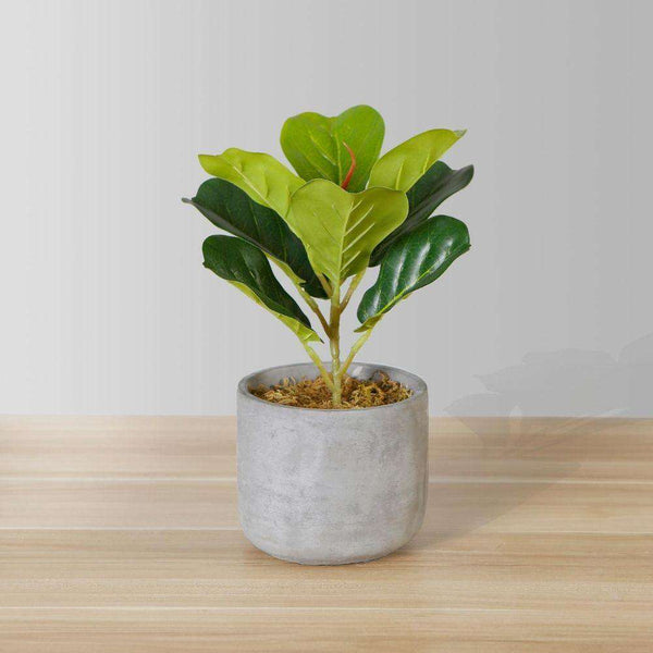 Panuco Potted Faux Fiddle Plant ArtiPlanto