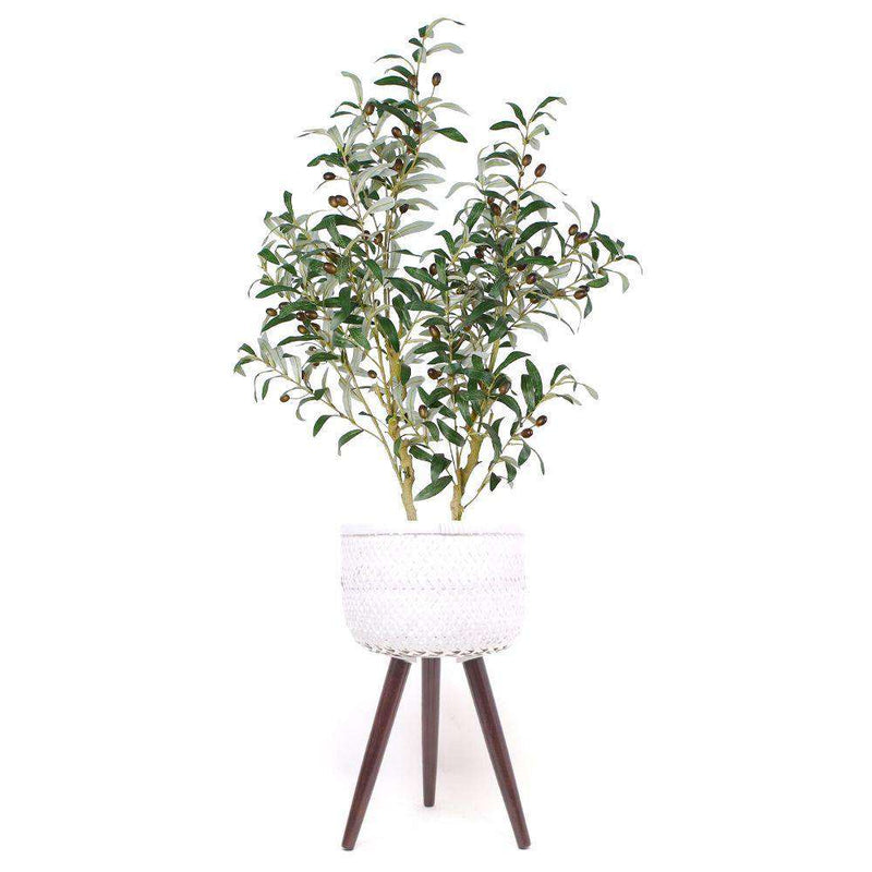 SHOOF BAMBOO PLANTER ON WOODEN STAND ArtiPlanto