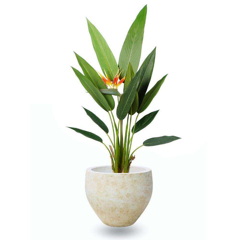 Sadira Cement Planter (Multiple Sizes) ArtiPlanto