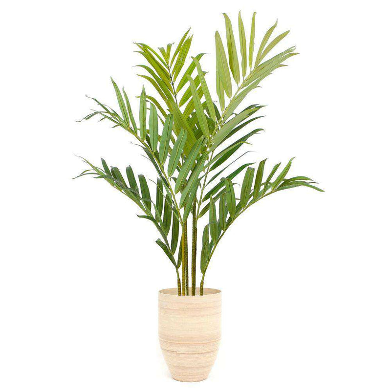 Sala Bamboo Planter (Multiple Sizes) ArtiPlanto
