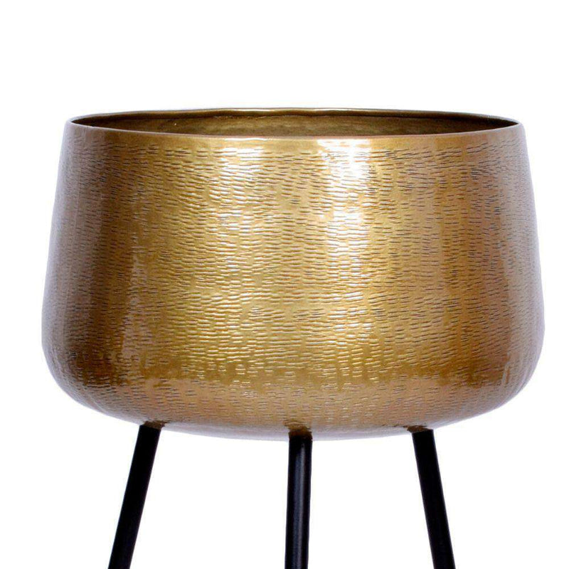 Sara - Brass Planter With Black Legs Brass Planter