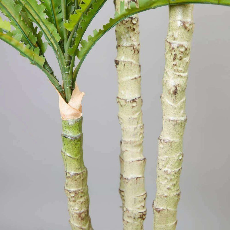 ALBA ARTIFICIAL BIRD NEST FERN POTTED PLANT 5.2' Potted Artificial Plant ArtiPlanto