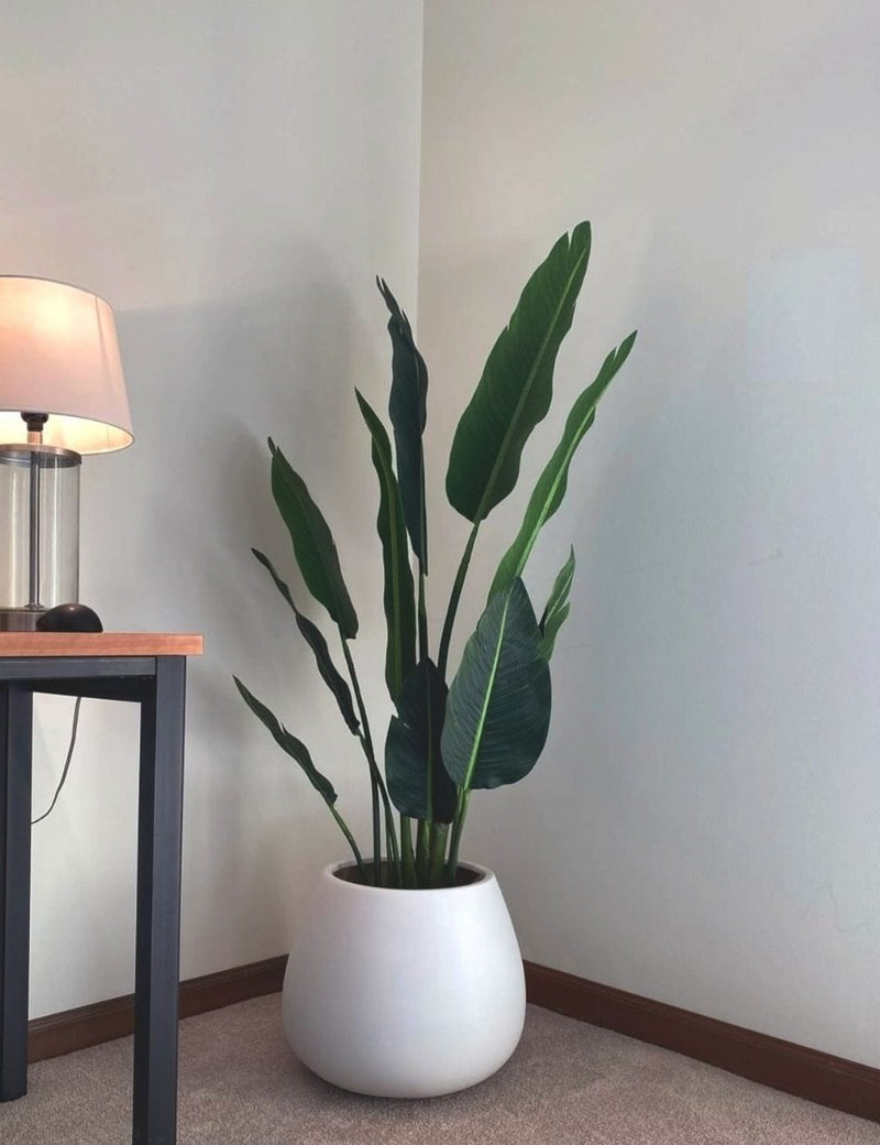 ZAPO Artificial Bird Of Paradise Potted Plant (Multiple Sizes)