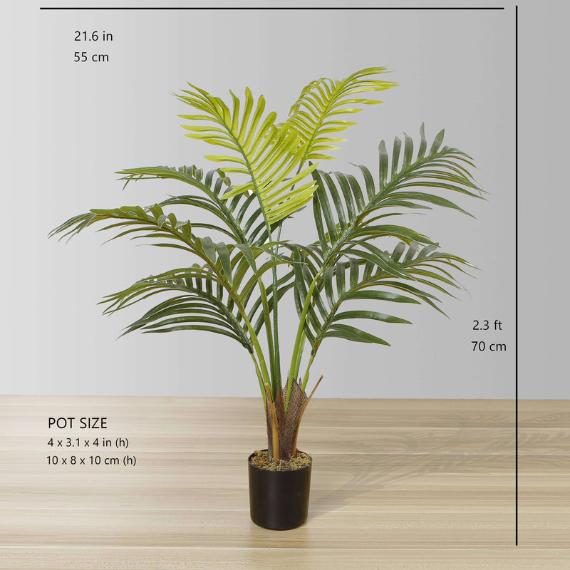 XELO Artificial Hawaii Kwai Palm Tree Potted Plant (MULTIPLE SIZES) ArtiPlanto