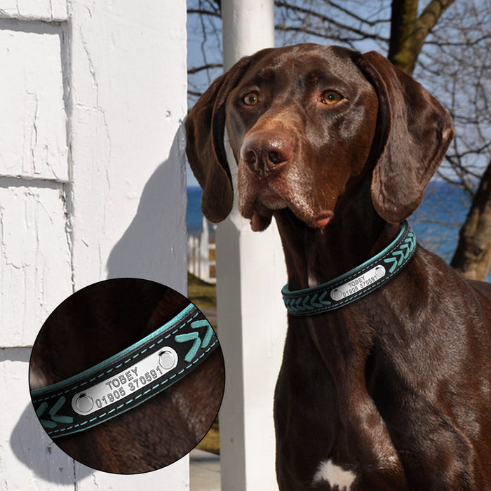 Pet ID Collar Free Engraving