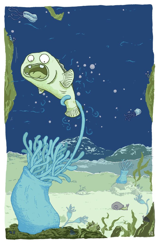 Creeps from the Deep - Anemone