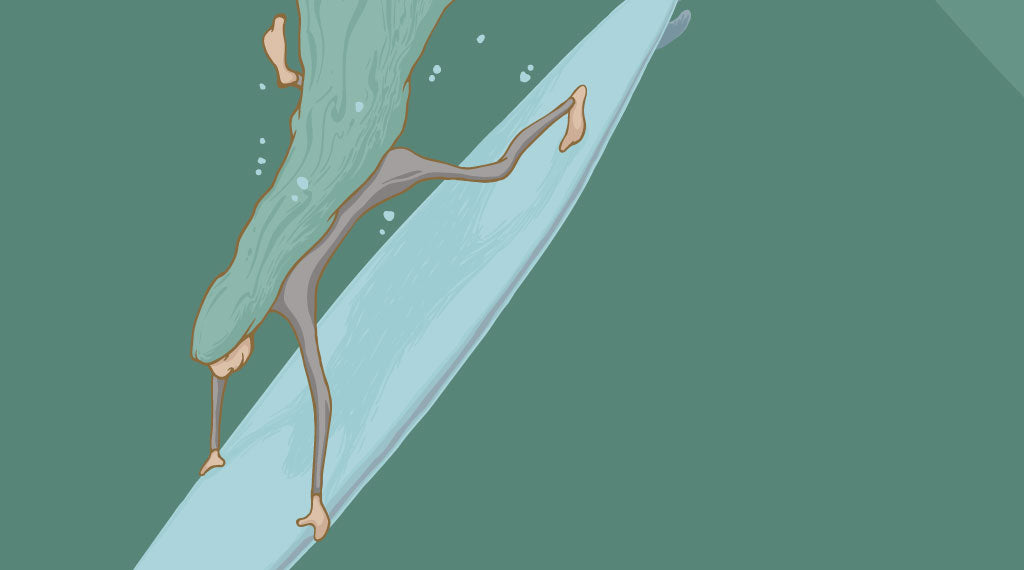 "Detail of the duck-diver from ""Deeper"" - digital illustration"