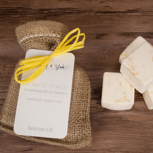 Wake Up Happy Aromatherapy Shower Steamers - Gift Pack - Rosewood & York