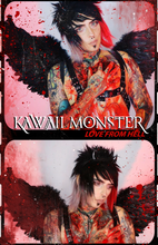 "Load image into Gallery viewer, Pre Order - KAWAII MONSTER ""Love From Hell"" Album (Free Signed 11x17 Poster + USB TAPE) - thedarkarts"