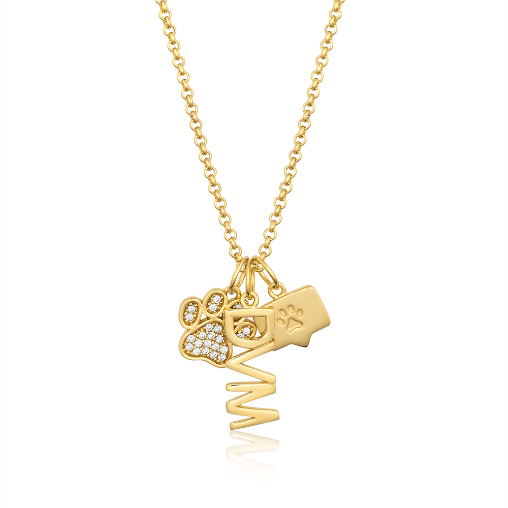 Doctor of Veterinary Medicine (DVM) Charm - V Coterie