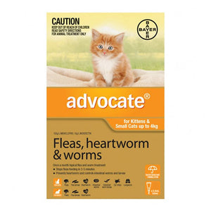 ADVOCATE CAT 0-4KG ORANGE 6PK
