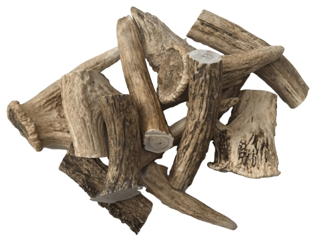 DEER ANTLER MEDIUM