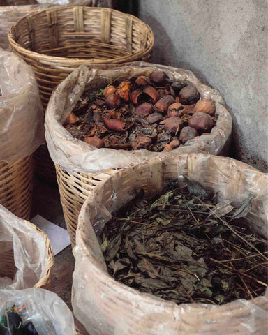plants natural dyes artisan mexico