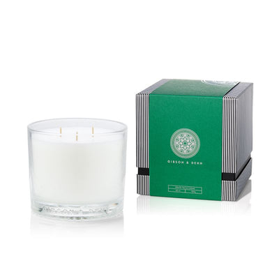 Gibson & Dehn White Tea & Cedar Three Wick Candle - The Gathering Shops