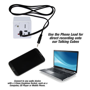 Phono Lead for Talking Cubes
