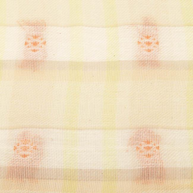 BDG Woven Square Plaid Fringe Scarf ACCESSORIES BDG