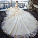 Tulle Long Train Wedding Gown