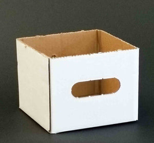 "6x6x5"" Delivery Boxes"