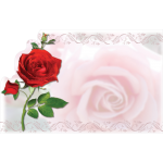 Red Rose Enclosure Card