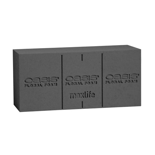 OASIS Midnight Floral Foam Maxlife Standard - 2 Block Pack