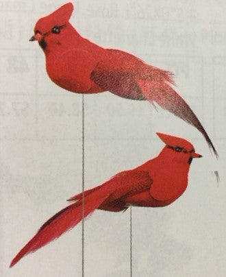 Red Cardinal Birds on picks - 4