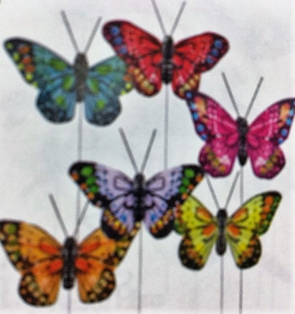 Colourful Feather Butterlies