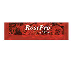 RosePro Liquid Rose Sticks x 1000
