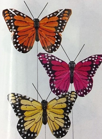 Monarch Butterflies, Assorted