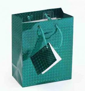"5.5 x 10.5 x 13"" Large Gift Bag Green"