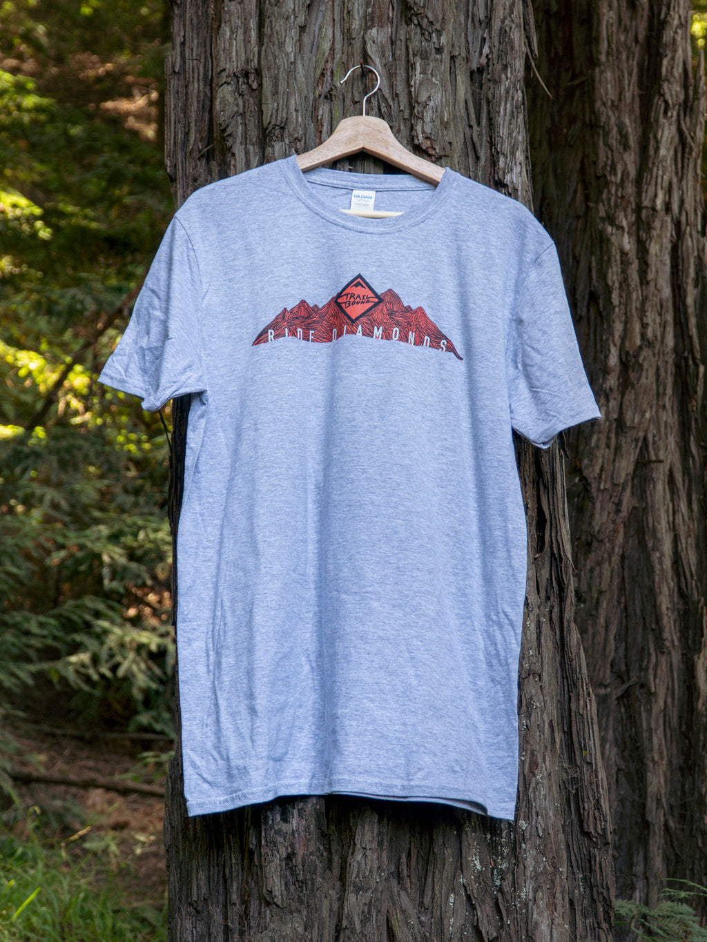 Ride Diamonds Topo Mtns T Shirt Grey