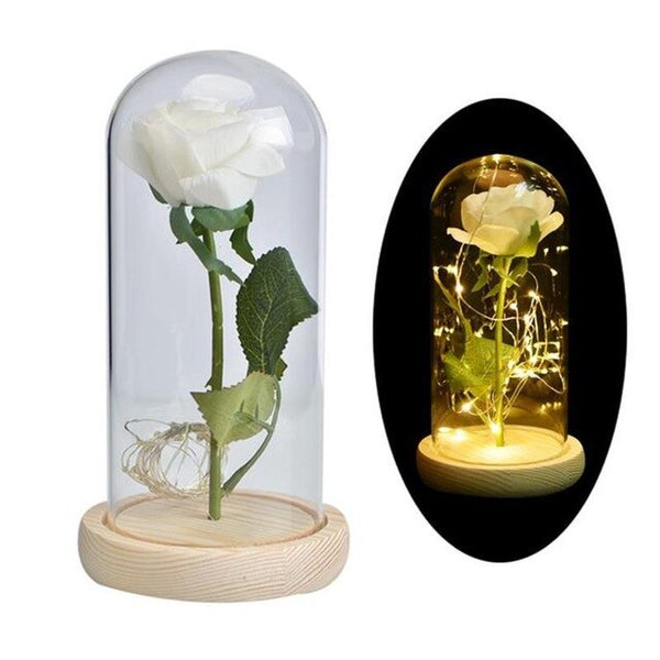 Enchanted Rose Flower Lamp - YouTech.Me