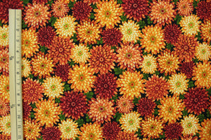 Medium Sized Red, Orange, and Yellow Flowers on Black